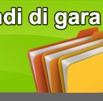 ESTRATTO BANDO DI GARA